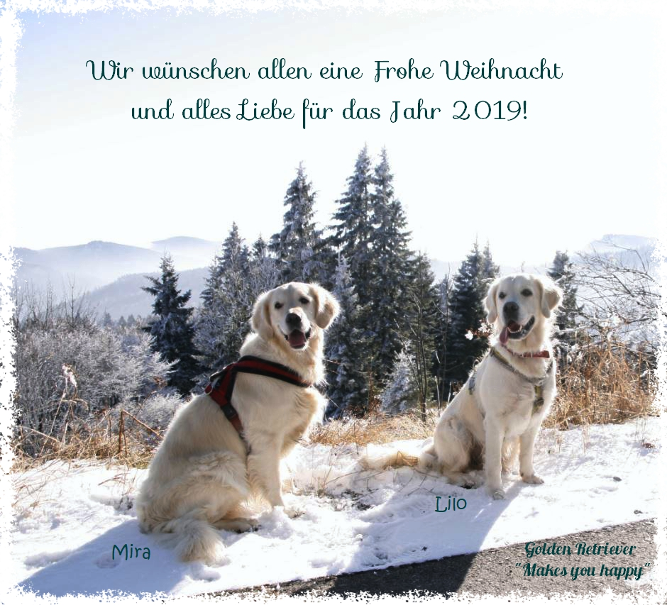 Unbenannt_Fotor